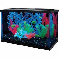 5 Gallon Aquarium Kit, Fish Tank, Beta Aquarium