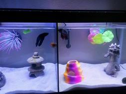 Aqueon 5 Gallon Fish Tank Divider