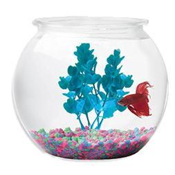 Koller Products BettaTank 2-Gallon Fish Bowl - BC044076