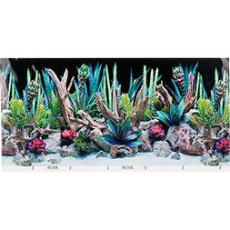 SeaView Double-Sided Desert Dream & Deep Flora Terrarium Bac