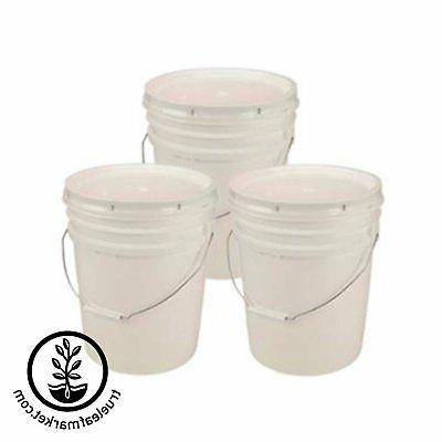 5 WITH LID BPA FOOD 90 MIL PLASTIC-