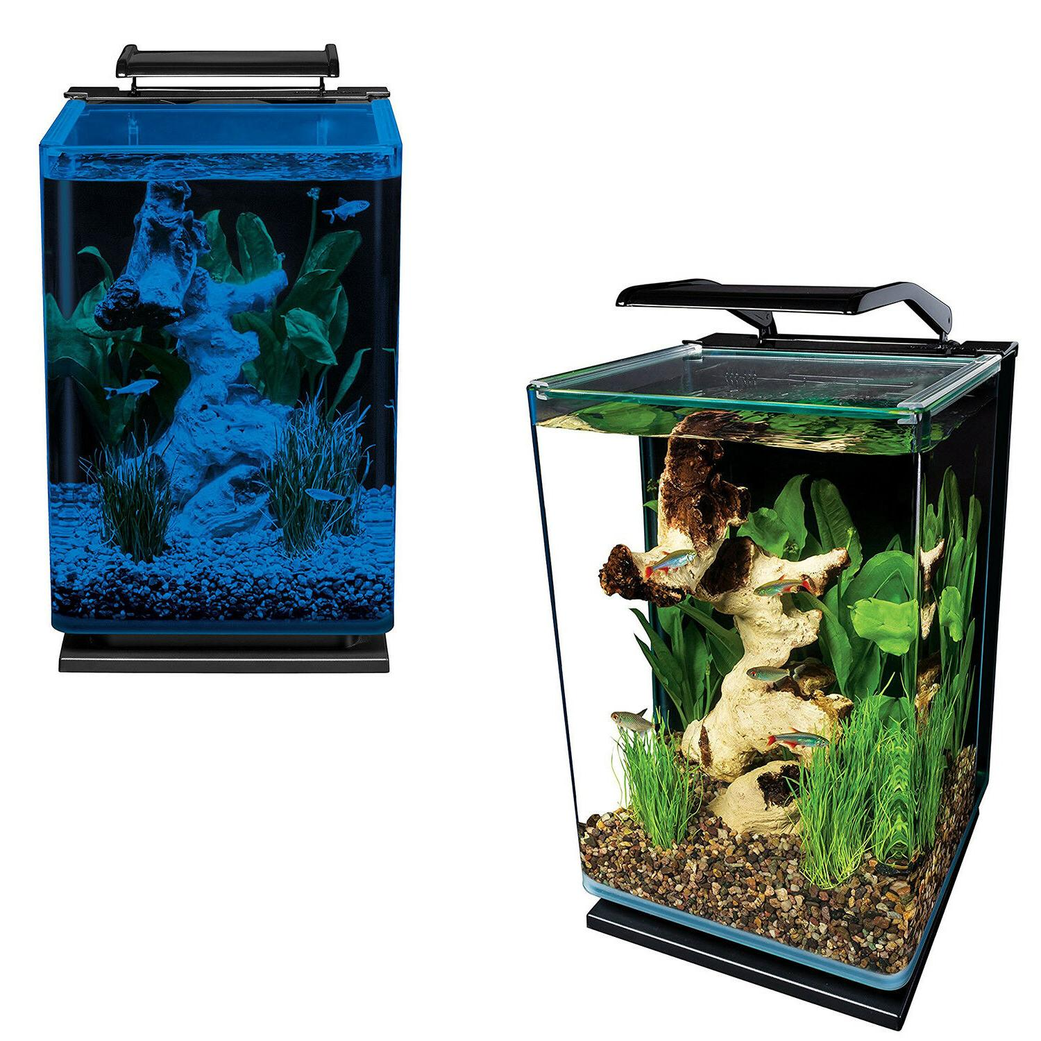 5 Gallon Glass Portrait Aquarium Betta Fish Tank Filtered LE