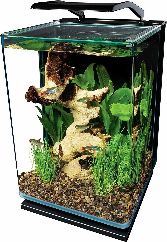 unique 5 gallon portrait glass led fish