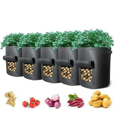 5 Packs Plant Bags with 5