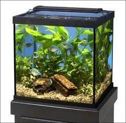 Marineland  AMLNV18080 Glass Cube and Column Aquarium Tank,