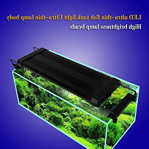 IDEALUX Aquarium 12 inch Fish with Fish 15 White )