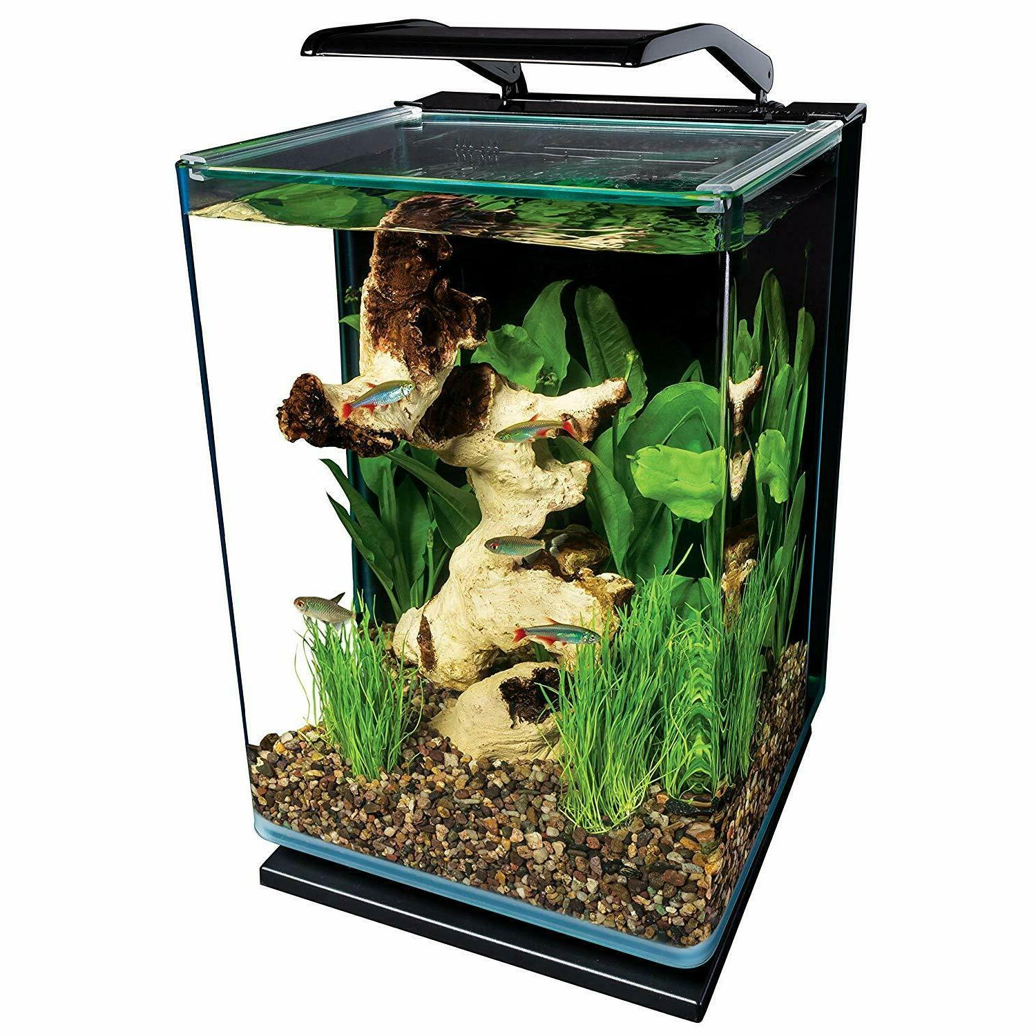 5 Gallon Portrait Glass LED Aquarium Kit