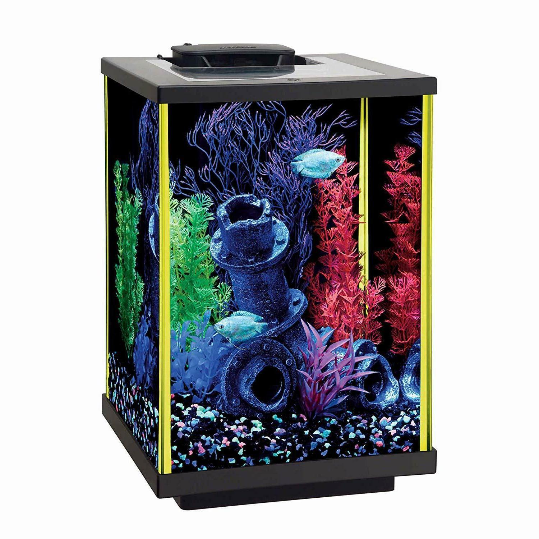 Aqueon Aquarium Kits NeoGlow, 5 Gallon Fish