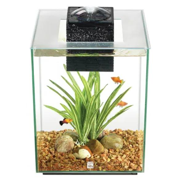 fluval chi aquarium kit 5 gallons