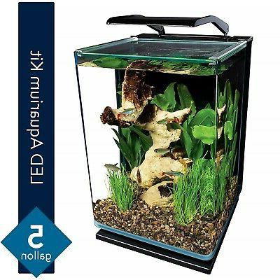 Modern 5 Gallon Portrait Fish Tank Aquarium Starter Kit with