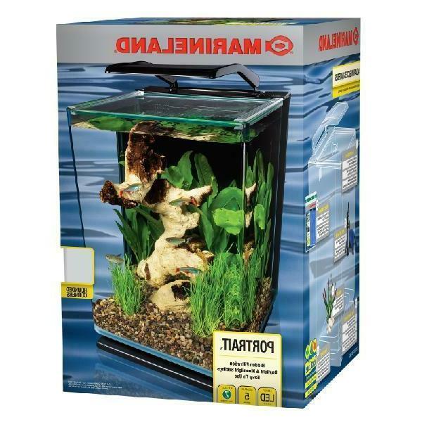 Modern Aquarium 5 Gallon Black Desktop Glass Fish Tank Start
